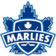 Toronto Marlies vs Belleville Senators
