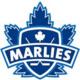 Toronto Marlies vs Rochester Americans