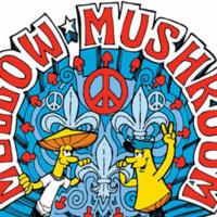 Fundraiser at Mellow Mushroom