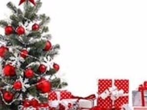 TSA Christmas Party and Gift Exchange - St. Edward\'s University