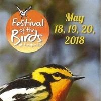 2018 Festival of the Birds at Presque Isle
