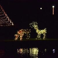 Crossland's Annual Christmas Displays