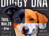 Doggy DNA: A review and assessment of the canine DNA testing marketplace