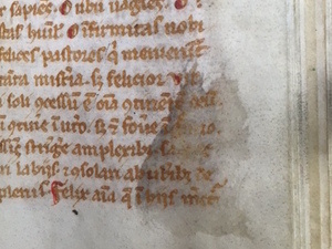 Multispectral Imaging of Medieval Manuscripts
