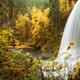 Silver Falls State Park Trip