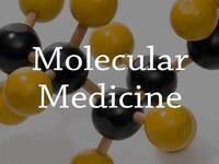 Molecular Medicine Seminar