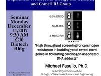 Special Cornell R3 Group Seminar with Michael Fasullo