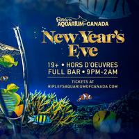 New Years Eve at Ripley's Aquarium