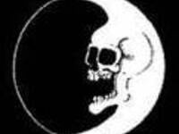 Dead Moon Night: A Tribute to Fred Cole