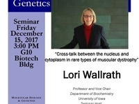 """MBG Friday Seminar with Lori Wallrath """"Cross-talk between the nucleus and cytoplasm in rare types of muscular dystrophy"""""""