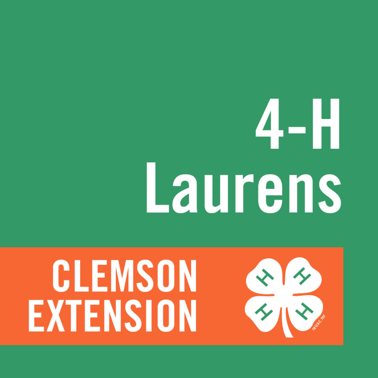 Laurens County 4-H Resume, Record Book, and Portfolio Submission Deadline