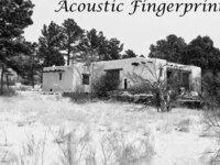 Listening for Acoustic Fingerprints