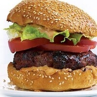 What Happens to a Hamburger? - Digestion Science