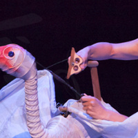 FirstWorks presents: Heather Henson's Handmade Puppet Dreams, vol. 5