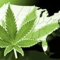 Is the U.S. About to Legalize Recreational Use of Marijuana?
