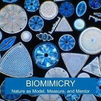 Biomimicry + CU Faculty