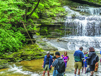Gorgeous Gorges of the Finger Lakes: A CAU summer program led by Warren Allmon