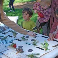 UC Davis Biodiversity Museum Day