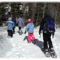 Homeschool Day: Winter in the Woods