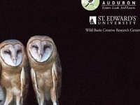 Adaptations in Owls Lecture