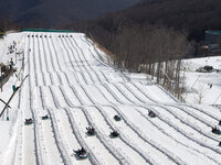 Snow Tubing and Winter Hiking