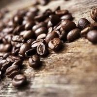Bioethics Coffee Hour - Mondays 6-7pm