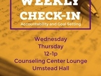 Weekly Check In - Accountability and Goal Setting