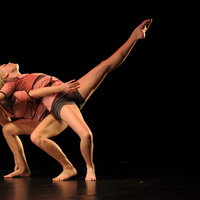 JMU Virginia Repertory Dance Company - Dancescapes