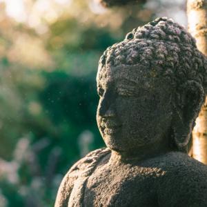 Weekly Buddhist Meditation