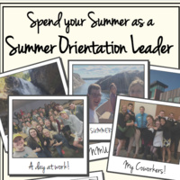 Learn more about the Summer Orientation Staff Assistant Position