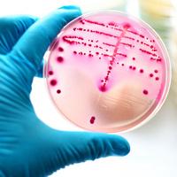 Nebraska Antimicrobial Stewardship Summit