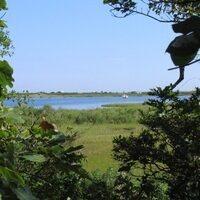 A Virtual Tour of Caroline Tuthill Preserve