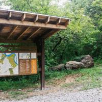 Knoxville's Urban Wilderness