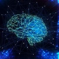 Homo Technologicus:  Brain Science, Flourishing  & Human Potential