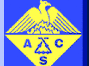 Meeting-in-Miniature (MIM) of the ACS Cleveland Section