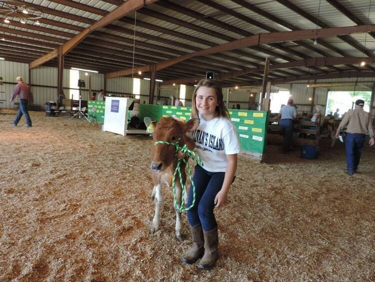 SC Dairy Heifer Project Registration
