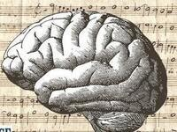 Science on Tap — Music and the Aging Brain: A Discussion and Concert