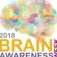 Brain Awareness Workshop: March 13, 5:00pm