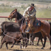 Ranch Roping Workshop