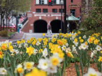Spring recess begins for Degree programs