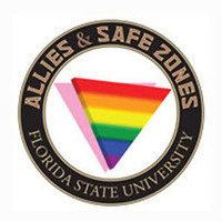 Allies & SafeZones 101 (PDSZ01-0077)