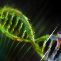 The Hope and Threat of Human Gene Editing
