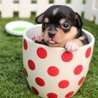 Relaxation Station: DIY Make a Mug