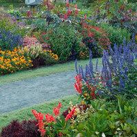 Planting a Cutting Garden