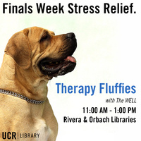 Therapy Fluffies