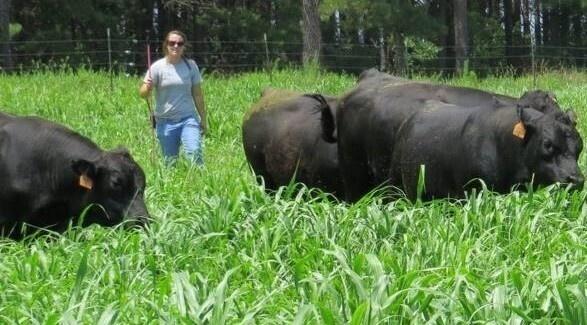 SC Cattlewomen's Short Course (Saluda)