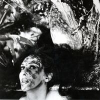 ART WORK: An Evening with Carolee Schneemann