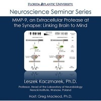 Neuroscience Seminar Series - Leszek Kacamarek, Ph.D.