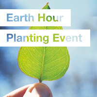 Earth Hour Planting Event