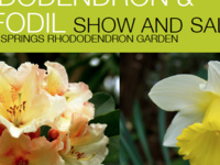 Rhododendron and Daffodil Show and Sale